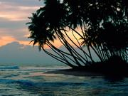 Beautiful Beaches Of The World HQ Wallpapers Th_25988_tduid1721_Forum.anhmjn.vom_ColomboSriLanka_122_109lo