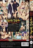 harte_triebe_gefangen_gefesselt_gefickt_back_cover.jpg